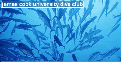 CLICK HERE FOR JCU DIVECLUB!!